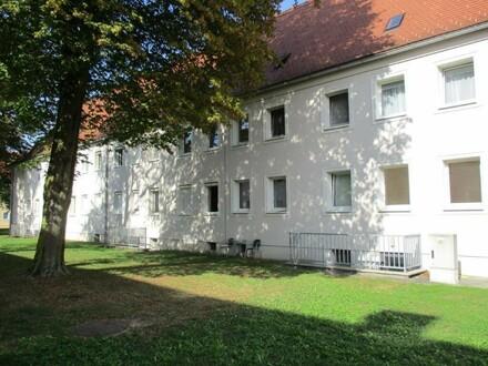 Sanierte Erdgeschoß Wohnung, 3 Raum im schönen Stadtteil Steyr Münichholz
