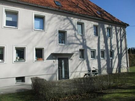 Preiswerte, sanierte 1 Raum Single Wohnung im schönen Stadtteil Steyr Münichholz
