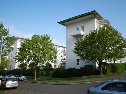 Genießen Sie die großzügige Terrasse im Grünen! Tolle 2-Zimmer-Wohnung in herrlicher Ruhelage mit 1A-Infrastruktur ! Pr…