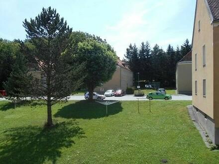 XL - 3 Zimmer-Wohnung in naturnaher Ruhelage in der nachgefragten WAG-Siedlung ACHTUNG: Provisionsfrei