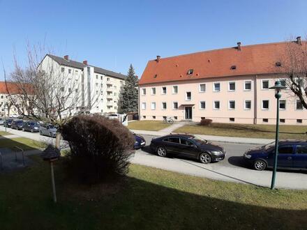 3 Raum Erdgeschoß Wohnung in Stadtrandlage, Stadtteil Steyr Münichholz