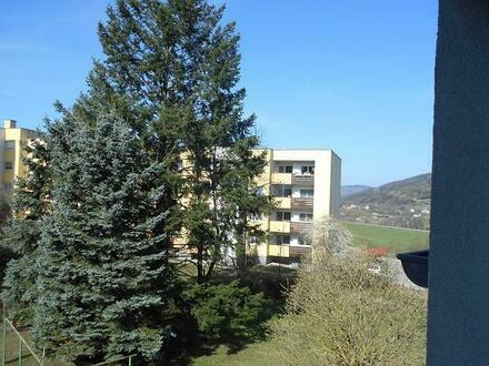 Idyllische 3-R.-Altbauwohnung in der nachgefragten WAG-Siedlung Traisen mit unschlagbarem Preis-/Leistungsverhältnis, a…