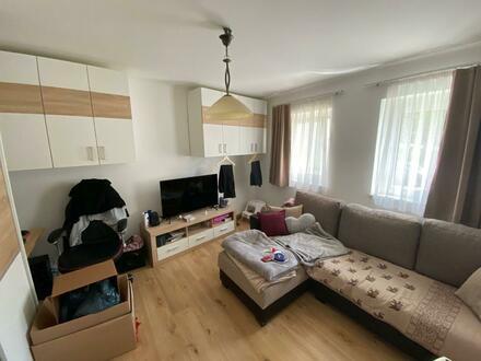 Komplett sanierte 2 Raum Wohnung im Erdgeschoß, Stadtteil Steyr Münichholz