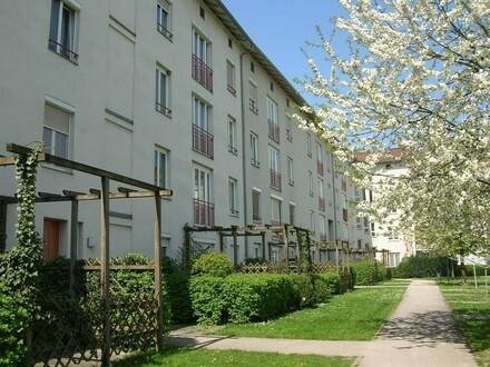 Familien aufgepasst: grünes und ruhiges Wohnen in Leondinger Toplage! Sehr schöne Raumaufteilung und erstklassige Infrastruktur!…