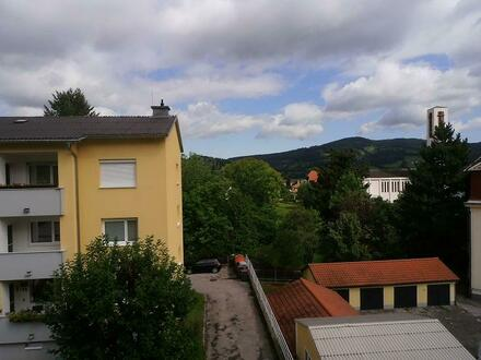 Schöne 2 Zimmer Wohnung im Zentrum von Traisen! Provisionsfrei!!!