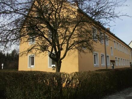 Sanierte Erdgeschoß 3-Raum-Wohnung, Bad mit Badewanne, gute Infrastruktur, im beliebten Stadtteil Steyr Münichholz - Prov.frei