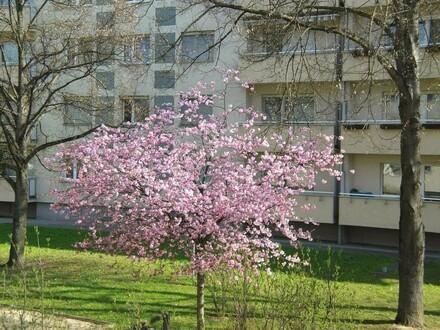 Urbane Lage - ideal für alle Stadtliebhaber - sehr schön geschnittene 4-Zimmer-Wohnung - provisionsfrei!