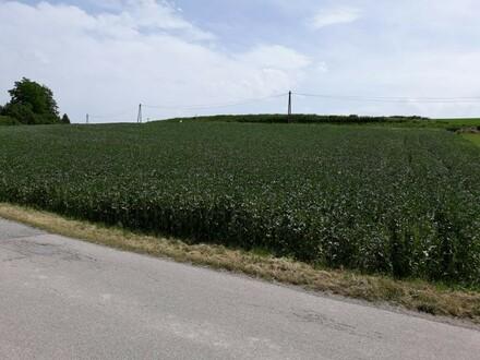 Hoch interessantes Mischbau - Grundstück an der B 137