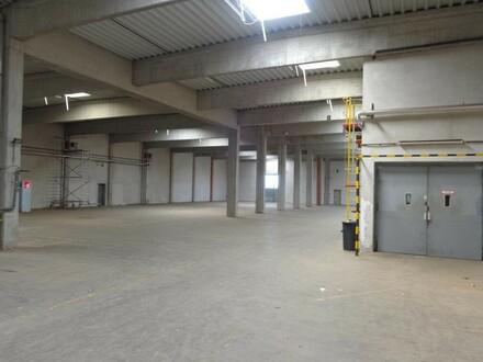 LAGERHALLE Über 15.000 m2 verfügbar !! Mit Laderampe, auch teilbar!! !