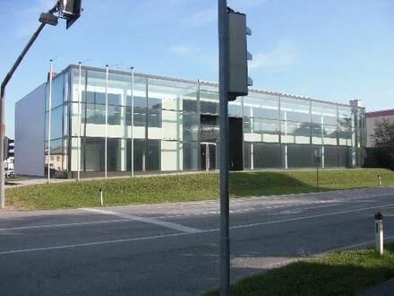 Glaspalast bei der Pluscity mit mehr als 2000 m²