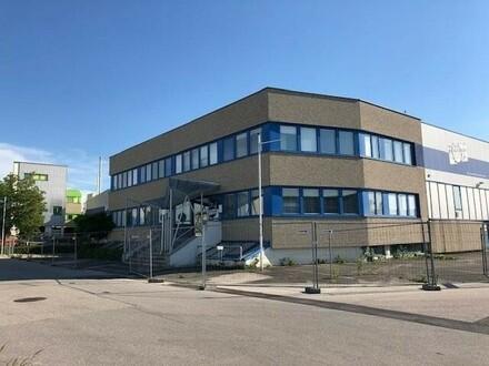 Gewerbeobjekt bestehend aus 2 Hallen verbunden und Büro und 260 m2 Büro. ab 1.7.2020 wieder verfübar