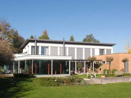Villa in Ruhelage mit Weinkeller und eigenem Weinberg und Pool und sehr großem Garten