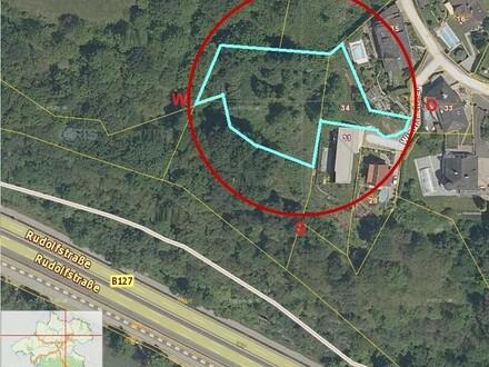 Baugrund in leichter Hanglage mit Wald dabei - nahe Tierpark Linz