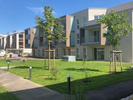 Anlegerobjekt mit 14 Wohnungen