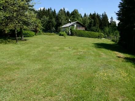 Schönes Haus umgeben von einem großen Garten