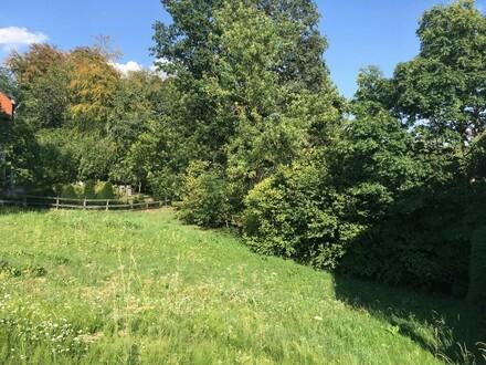 Toller Baugrund in Lichtenberg!