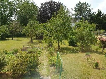 Zentral Innnestadt, im Dachgeschoss + grosser Garten
