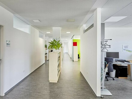 Großzügige Bürofläche über eine Ebene!