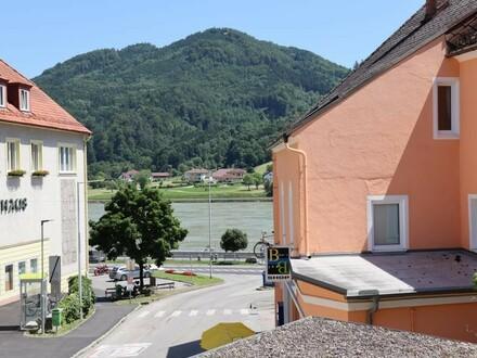 Donaublick am Fuße von Schloss Greinburg
