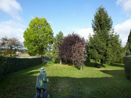 Garten Nettingsdorf