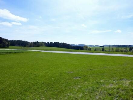 Baugrund Baumgarten