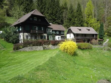 Traumhafter Ausblick - Sanierungsbedürftige Villa!