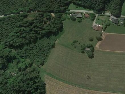 Baugrundstück Salzkammergut mit landwirtschaftlichen Nutzgrund