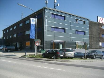Helle Büroflächen 30m² bis 270 m² frei gestaltbar