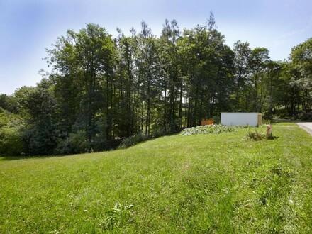 Grundstück Steyregg