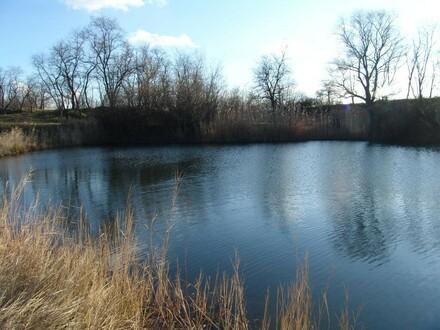 Idylle PUR - Grundstück mit Fischerteich