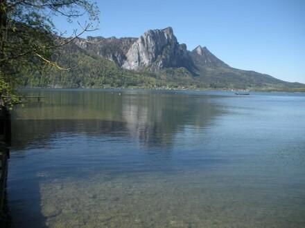 exklusiver Badeplatz am Mondsee in ruhiger, sonniger Lage