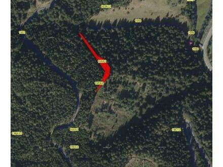 Verkauf einer Grundstücksparzelle in Voglau/Abtenau KG Rigaus Gst. Nr. 1043/1