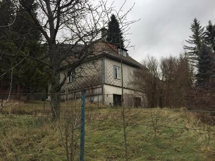 Einfamilienhaus Zürner 1 mit schönem Garten in der Marktgemeinde Gaming zu verkaufen