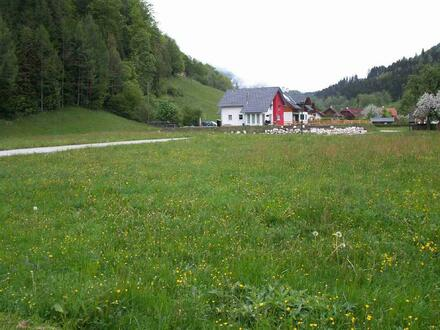 Kirchfeldsiedlung 1