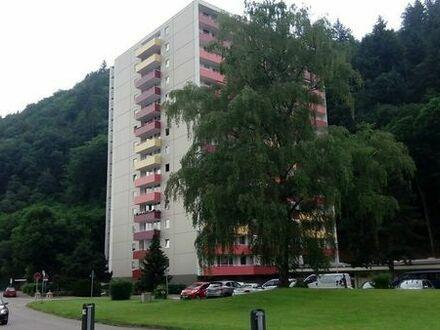 helle 1 (2) -Zi Wo Südseite mit herrlichem Schwarzwaldblick