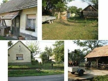 Grundstück 8850 m2 in Ungarn Nähe Balaton für Obstanbau / Pferdehaltung zu verkaufen