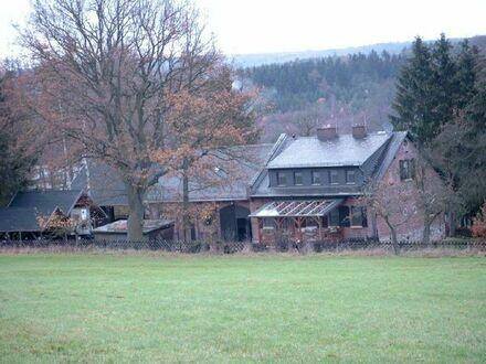 """""""Traumhaftes Anwesen"""" in zentraler Alleinlage. Nur 1 Min. zur A61 Mainz - Koblenz"""