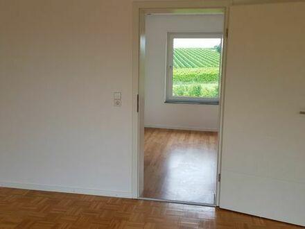 4 Zimmer Wohnung zu vermieten Dierbach - Nähe Schaidt/Bergzabern