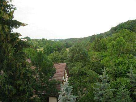 Hübsche 2 Zi. Wohnung in Vaihingen an der Enz/Aurich zu verkaufen