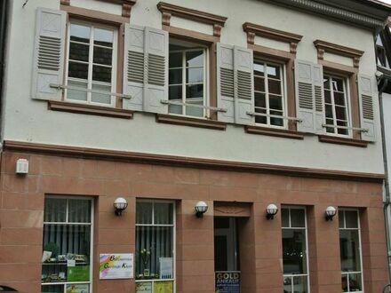 Gemütliche Loftwohnung mitten in Bad Bergzabern, KÖ 29