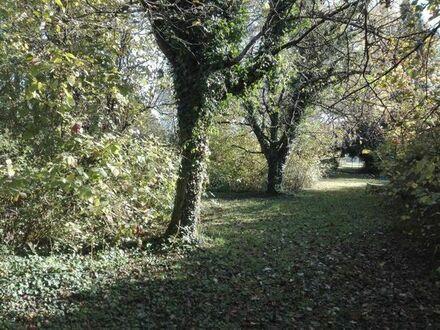 Gartengrundstück in Esslingen-Kimmichsweiler zu verkaufen