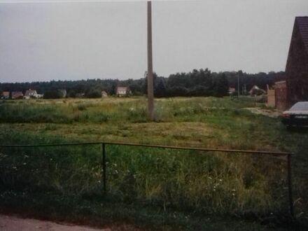 Bauland in 17309 Viereck