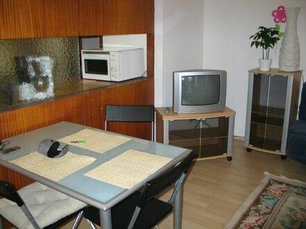 1-Zi.Appartment Ludwigsburg Süd, voll möbliert, auch monatsweise, ab 1.8.