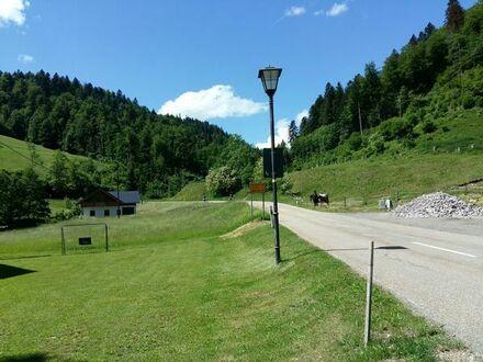 Grundstück in Vorderpfalz oder Rheinhessen gesucht