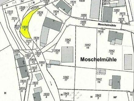 """Wasserfläche """"Schwarzbach"""" in Waldfischbach-Burgalben"""